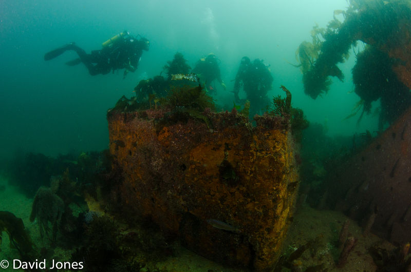A group of divers next to an underwater ship wreck