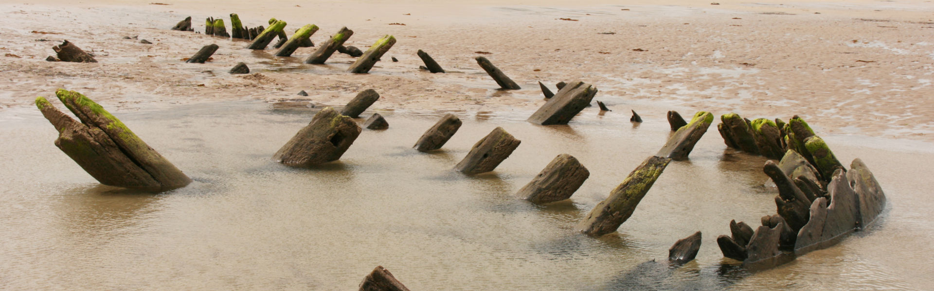 Shipwreck sink into the sand