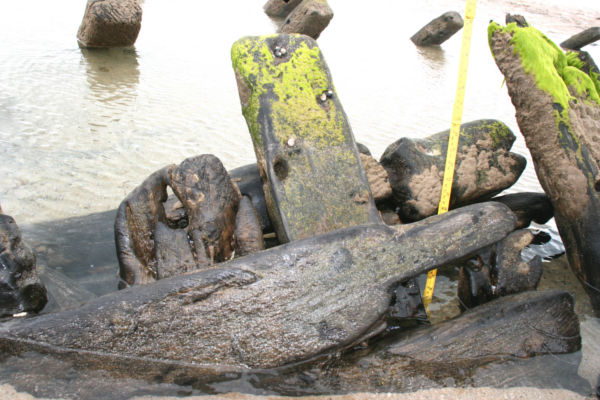 A close-up of the shipwreck