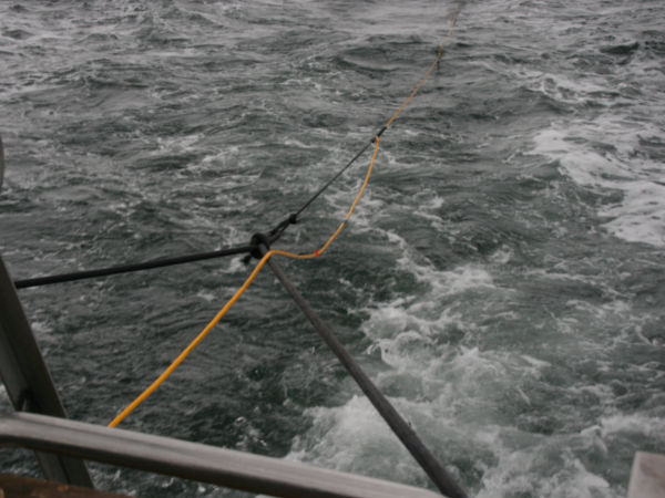 Thumbnail - A bungee line acts as an excellent shock absorber when towing a fish