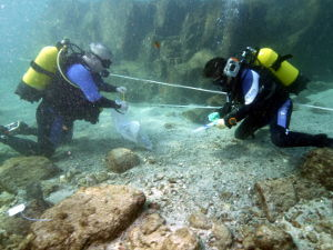 Thumbnail - Two divers underwater surveying the wreck
